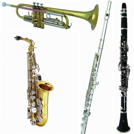 back to school sale save 20 on all school band instruments pro music. Black Bedroom Furniture Sets. Home Design Ideas