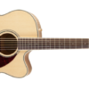 Fender CJ-290SCE Jumbo Acoustic-Electric Guitar With Hardshell Case Side